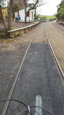Riding the tracks at Taumarere
